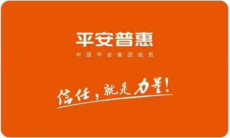 平安普惠投资咨询有限公司昆明青年路分公司