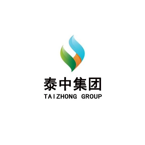 山东泰中电子商务集团有限公司