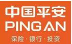 中国平安人寿保险股份有限公司河南分公司启能团队